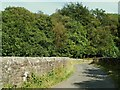 NY4973 : Blacklyne Bridge by Rose and Trev Clough