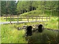 NX4095 : Bridge Over The Water Of Girvan by Mary and Angus Hogg