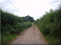 SJ6826 : Pixley Lane, Hinstock by A Holmes