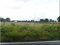 SJ6829 : Light Wood Farm by A Holmes