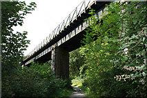 SX0656 : Railway Viaduct by mike hancock