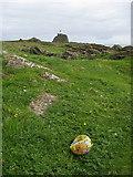NR7103 : Flotsam on Sanda Island by Frederick Pollock