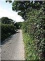 TG2431 : Brick Kiln Lane by Evelyn Simak