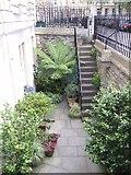 ST7565 : A basement garden in Laura Place by Jonathan Billinger