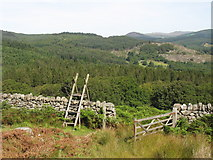 SH7123 : Outsize stile and open gate on miners' path by Eric Jones
