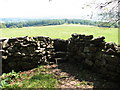 ST4493 : Stone stile on Gray Hill by Roy Parkhouse