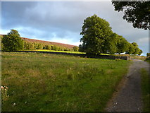 SK2767 : Beeley - Track view in direction of Fallinge by Alan Heardman