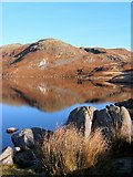 NY1601 : Blea Tarn by Andrew Hill