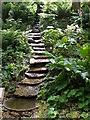 NY8361 : Man made waterfall rill by Carol Rose