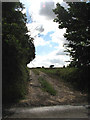 TG2933 : Track and public bridleway off the B1145 (Knapton Road) near Knapton House by Evelyn Simak