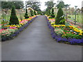 NS5563 : Victorian walled garden and sweet pea trials, Bellahouston Park by Chris Wimbush