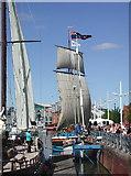 TA0928 : Hull Marina by Paul Glazzard
