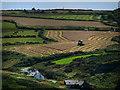SM7930 : Harvesting Aberieddy by Chris Gunns