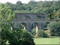 SJ2837 : Viaducts at Chirk by Trevor Rickard