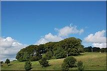 J2087 : Donegore motte near Templepatrick by Albert Bridge