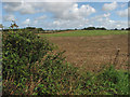 TG1036 : View east across farmland on Brake Hill by Evelyn Simak