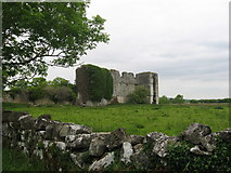 N0066 : Rathcline Castle, Lanesborough, Co. Longford by Kieran Campbell