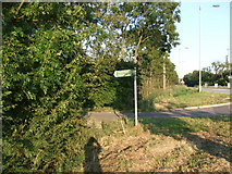 TL3160 : Public footpath sign to Knapwell by Mark Hurn