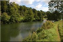 ST7066 : River Avon past Kelston Park by Philip Halling