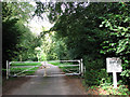TG3316 : Private road leading to Old Hall by Evelyn Simak