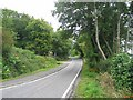 NR9773 : Narrow section of road entering Tighnabruaich. by Johnny Durnan