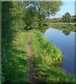 SK5518 : Grand Union Canal & towpath by Mat Fascione