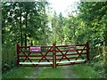 NY4739 : Entrance to Ravensgill Plantation by Rose and Trev Clough