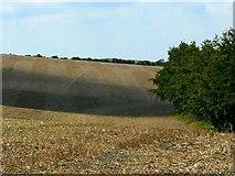 SU2886 : Stubble field, near Compton Beauchamp by Brian Robert Marshall
