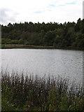 SE5976 : Lower Fish Pond by Gordon Hatton