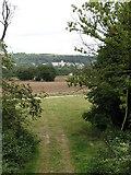 SE5976 : Woodland Fringe by Gordon Hatton
