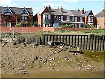 TF3243 : The river bank on the River Witham, Boston by Dave Hitchborne