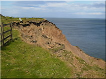 TA1281 : Cliff erosion on North Cliff near Filey by Phil Catterall