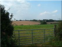 SW9544 : Field, through a gate. by Gareth