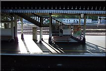 SX9193 : Platforms 5 and 6, Exeter St Davids by Derek Harper