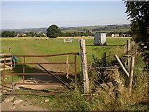 SE1421 : Pickman Wood, Firth House Lane, Rastrick by Humphrey Bolton