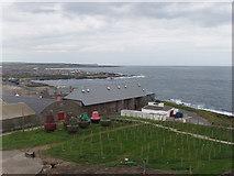 NJ9967 : North Aberdeenshire coast at Fraserburgh by David Hawgood