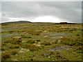 NY8002 : The barren top with the occasional huddle of peat that has somehow escaped erosion by Ian Greig