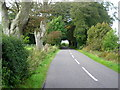 NY0567 : Road at Nether Locharwoods by Iain Thompson