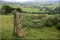 SE5599 : Old Gate Post, Trennet by Mick Garratt