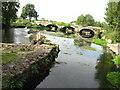 S4943 : Bridge over Kings river , Kells by liam murphy