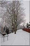 SJ5687 : Well Lane, Penketh by Tony Beattie