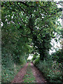 TG0720 : Approaching Whitwell Road by Evelyn Simak