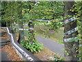 NZ2560 : The Running Line, Saltwell Park, Gateshead by wfmillar