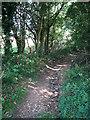 TG0032 : Public bridleway to Osier Carr by Evelyn Simak