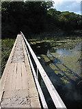 SR9694 : Narrow Bridge over Bosherston Lily Ponds by Pauline E