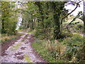 NX6549 : Track alongside public road by Phil Catterall