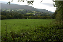 SO3129 : The Olchon Valley near Longtown by Philip Halling