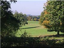 TQ5794 : Belvedere Field, South Weald by John Winfield
