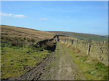 SD9810 : Ox Hey Lane, Denshaw by michael ely