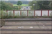 NY7063 : Tyne Bridge from Haltwhistle Station by Stephen McKay